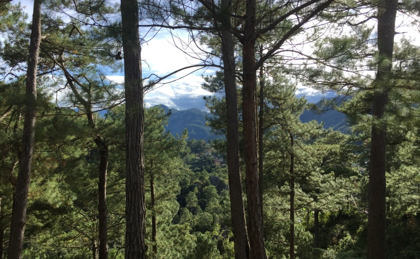 Tips and Tricks for Your Next Sagada Adventure – Things We Wish We Knew